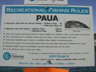 パウア貝の捕獲ルール